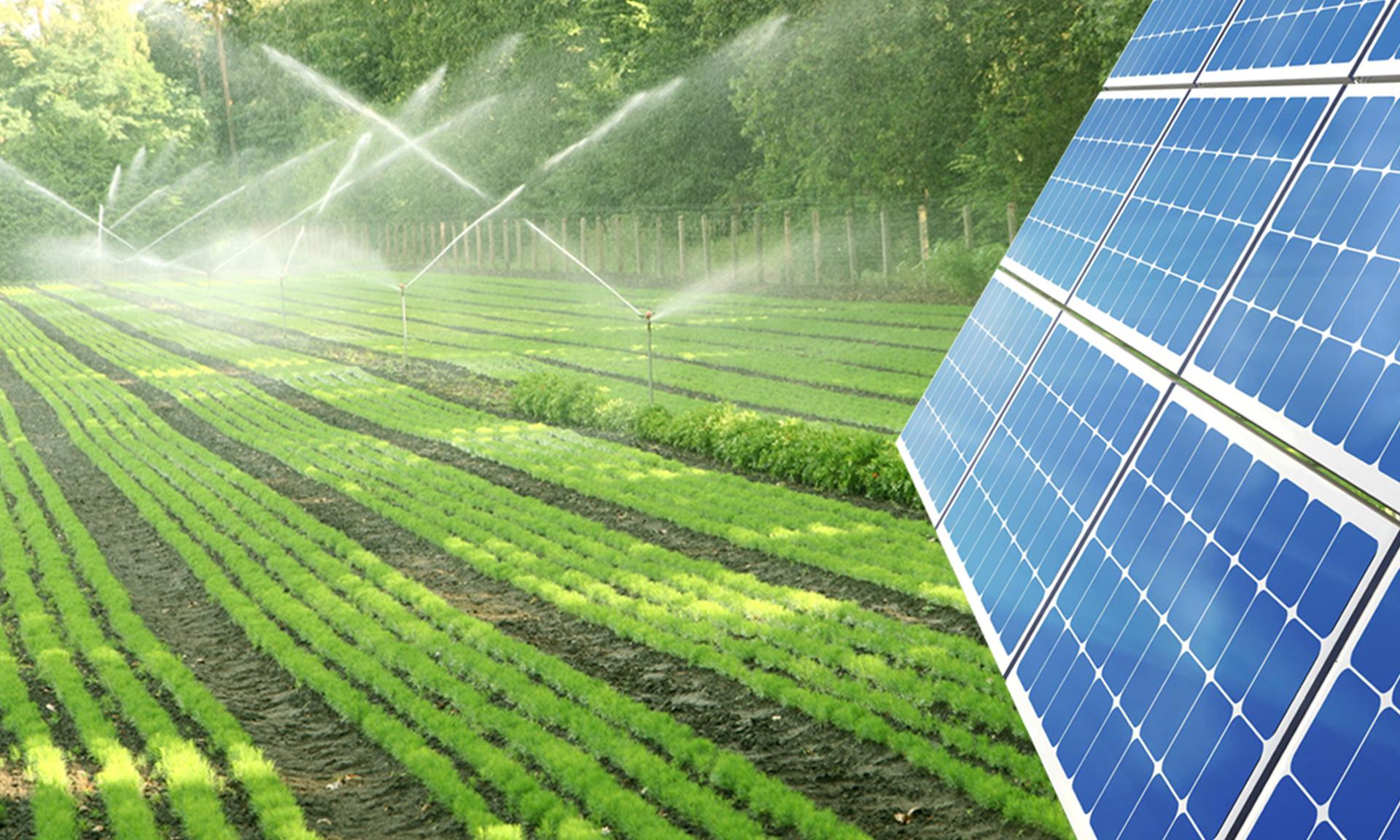 Tarımsal Sulama Güneş Enerjisi Çözümleri